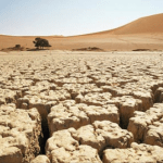 drought in pakistan