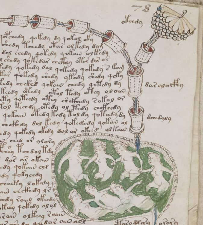 Voynich Manuscript Illustrations - Beinecke Library, Yale University