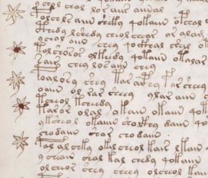 Voynich Manuscript Text - Beinecke Library, Yale University