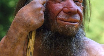 Reconstruction of an elderly Neanderthal Neanderthal Museum Mettman